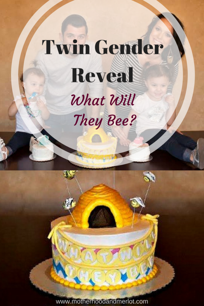 Ideas for doing a twin gender reveal. What will they bee theme for having twins. Love using cakes for gender reveals!