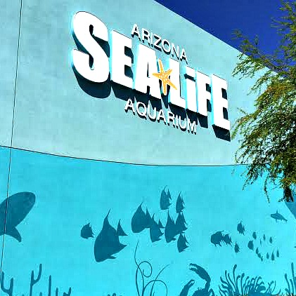 sea life arizona