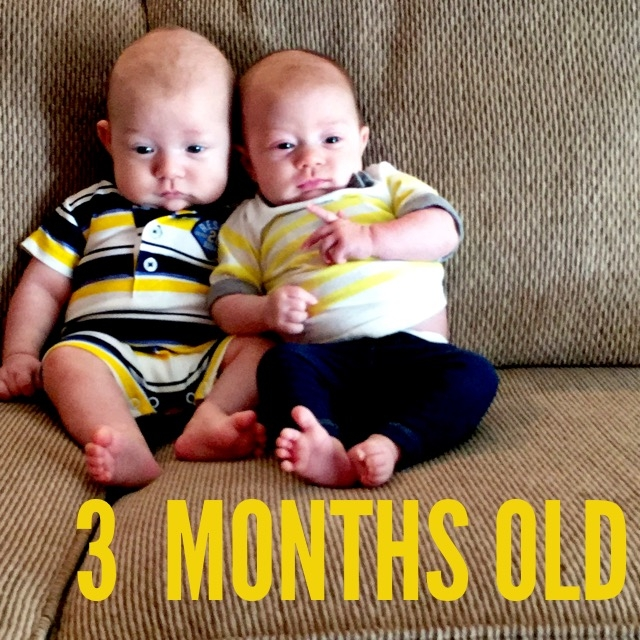 twins at three months