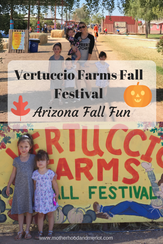 Looking for an Arizona pumpkin patch or fall festival to attend? Vertuccio Farms has a bunch of great activities for the whole family!